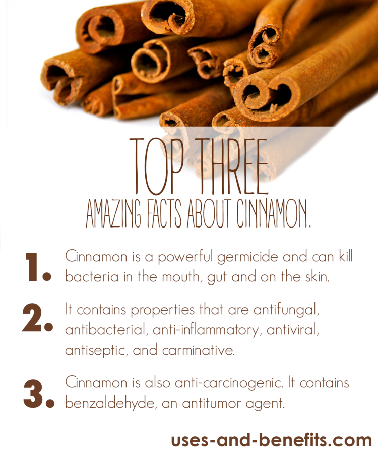 cinnamon facts