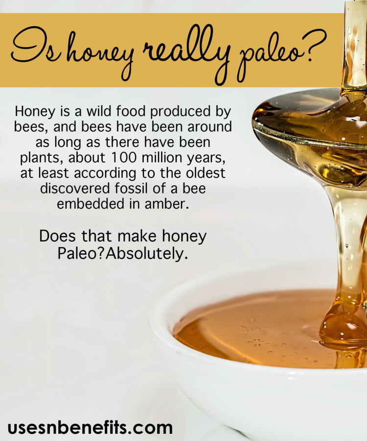 is honey paleo